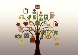 Ethical SEO Establishing Organic Sustainable Growth